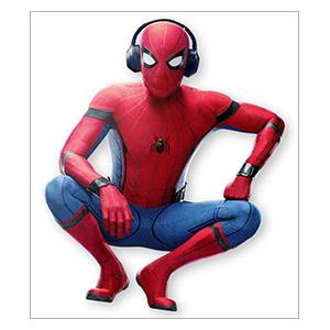 Spider-man. Размер: 35 х 40 см